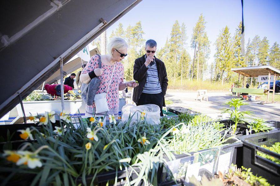 Sinikka ja Ismo Karhu olivat Ruukin puutarhamessuilla ensimmäistä kertaa ja maistelivat ohotanlaukkaa. Sinikka Karhu veikkasi, että vierailu puutarhamessuilla tulee näkymään kukkarossa.