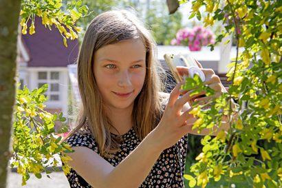 """12-vuotias liminkalainen Kaisla voitti valokuvauskerhojen kevätkuvakilpailun –""""Siellä kerhossa on yksi ekaluokkalainen, joka aina ihmettelee, miten osaan tehdä niin hienoja videoita"""""""
