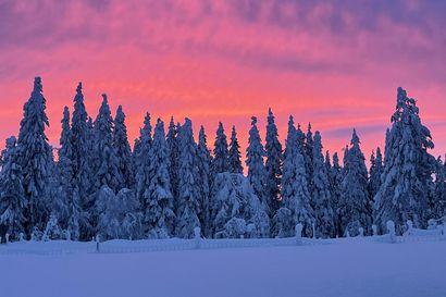 Lukijat kuvasivat tiistain syvänpunaista taivasta – Meteorologi kertoo, mistä on kysymys