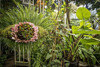 Kukkia ilmassa ja hiljaisuuden hoivaa –OSAOn floristiopiskelijoiden kukkasidontatyöt yllättävät näyttelyssä Oulussa