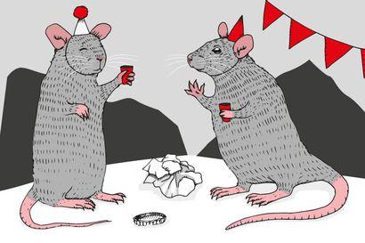 Essee: Ihmisten jälkeen juhlivat rotat ja taudit – Löytyisikö yksi selitys sikamaisuudelle itäisestä perimästämme?