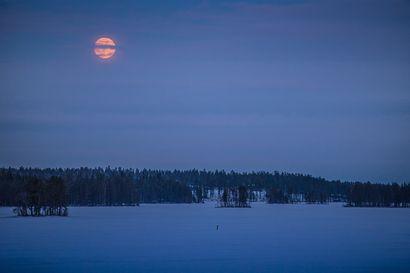 """Ursan """"Bongaa 100"""" haastaa katsomaan taivaalle – etsi maapallon varjo, Venus tai sivusateenkaari"""
