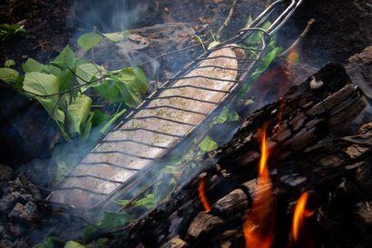 Ulkona voi syödä hyvin myös muualla kuin ravintolassa – Jouni Laakkonen johdattaa metsään tekemään avotulella kokonaisen illallisen pienellä määrällä tarvikkeita