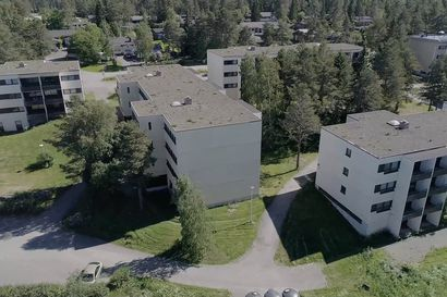 Ollinsaaren Ollinkehän tilanne  24.6.2019