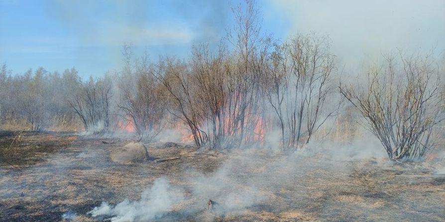 Palosta leviää savua, mutta pelastuslaitoksen mukaan se ei haittaa asutusta.