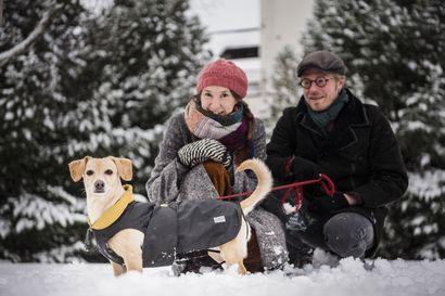 Rapakelillä ja pakkasella koirakin saa kelinmukaiset vaatteet – neljä koiranomistajaa vinkkaa, miten he pukevat lemmikkinsä