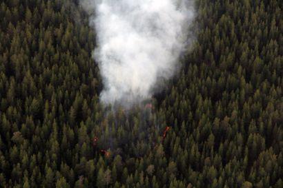 """Sallassa palaa maastoa lähellä Oulankaa – paikalla kymmenen pelastusyksikköä, mukaanlukien helikopteri – """"Ei ole vielä tarkkaa tietoa, leviääkö kansallispuiston puolelle"""""""