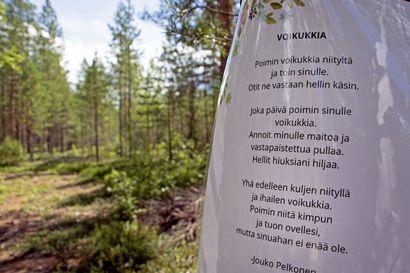 Runopoluilla tulevat Tyrnävän kylät tutuiksi  – Samalla voi ulkoilla Murron, Markkuun, Suutarinkylän, Temmeksen ja Kirkonkylän maisemissa
