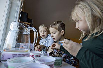 """Oulussa lapsia hoidetaan muita kuntia enemmän yksityisissä päiväkodeissa – varhaiskasvatusjohtaja: """"Haasteena on kyetä tarjoamaan yhdenvertaiset palvelut"""""""