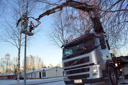 Jouluvalot on jo ripustettu – Pudasjärven joulunavaus perjantaina torilla