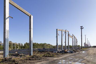 Metsä Fibre aikoo esijäähdyttää biotuotetehtaan jäähdytysvedet, jotta jäät eivät sulaisi Kemin edustalla