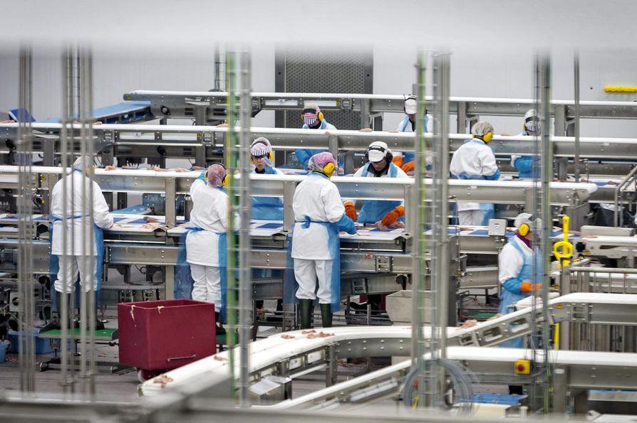 HKScanin Rauman broileriyksikön käynnistyksessä on moni asia mennyt pieleen. Investointi oli alibudjetoitu, eikä kaupoille ole saatu toimittua kaikkia luvattuja tuotteita. Kuva uuden tehtaan vihkiäisten yhteydestä loppukesältä 2017.