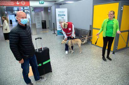 Perussuomalaiset kansanedustajat Jenna Simula ja Ari Koponen ehdottavat 5,9 miljoonan euron rahoitusta koronakoirille