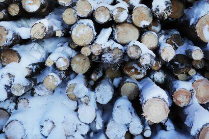 Kemera -tuet tuovat pari miljoonaa – metsien hoitoa ja metsäteiden rakentamista lisättävä