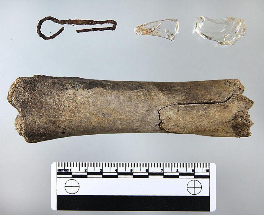 Naudan sääriluu oli haudattu muistomerkin alle pystyyn. Sen sisälle oli laitettu rautalangasta tehty koukku ja luuydinkanava oli tulpattu kahdella lasinpalalla.