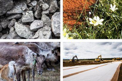 Kaivoslain esitysluonnos ei ratkaise kaikkia alan ongelmatilanteita – intressivertailun ja kaivosveron käyttöönotto selvitetään erikseen