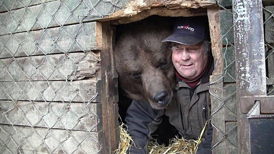 Juuso-karhu ja Suurpetokeskuksen yrittäjä Sulo Karjalainen tutkivat talvipesää.