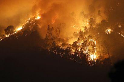 Kalifornian maastopalojen tuhot ennätyslaajoja – maastoa palanut yli kaksi kertaa niin paljon kuin edellisenä ennätysvuonna