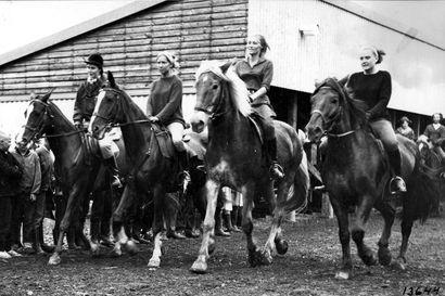 Vanhat kuvat: Oulun Ratsastajien tarkat harjoitukset – ratsastuskilpailut houkuttelivat runsaasti yleisöä  Oulun Pokaaliin