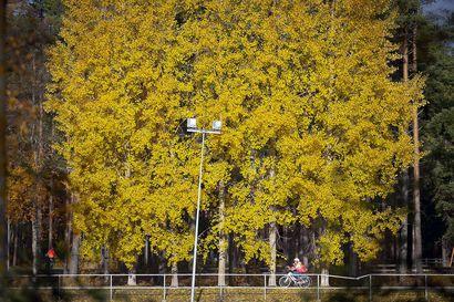 """Lämpimät lokakuun päivät jatkuvat Oulun seudulla alkavalla viikolla, mutta sadettakin saadaan  pitkin viikkoa – """"Erittäin lämmintä vuodenaikaan nähden"""""""