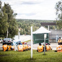 """Rovaniemellä 40 marjanpoimijalla on todettu koronavirustartunta – 110 on testattu, kaupunki lähellä kiihtymisvaihetta: """"Kaikki kriteerit täyttyvät"""""""