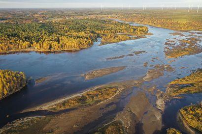 Simojoen tukkoinen suu aukeaa vihdoin – suistoalueen ruoppaus alkaa loppusyksyllä, vesillä liikkuminen ja lohen nouseminen helpottuvat