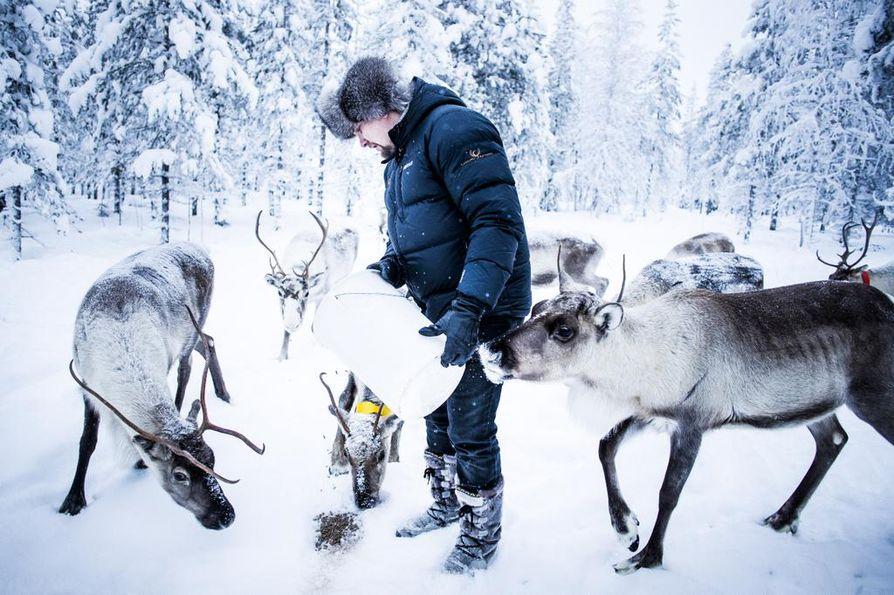 """Luxury Actionin uusi huippukohde on Janne Honkaselle """"kuin Lappi pienoiskoossa"""" tai """"huippuristeilijä revontulten alla"""". Syrjäisen, aidatun alueen sisällä on myös oma porotarha."""