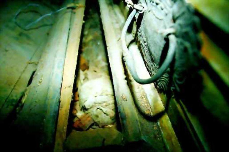 muumioitunut ruumis