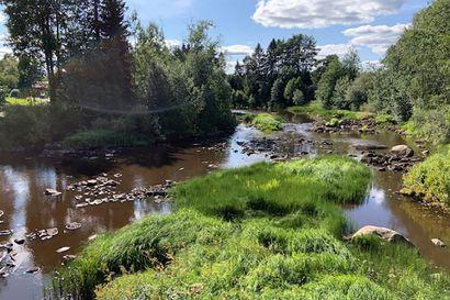 Pohjavedet vähissä, virtaamat alhaalla kaikkialla jokilaakson uomissa