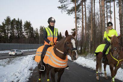 Tieliikennelaki määrää hevoset autojen sekaan – Vaaratilanteita liikenteessä kokenut oululainen ratsastaja toivoo, että hevosen kanssa saisi kulkea pyöräteillä
