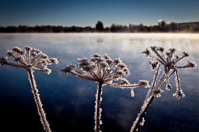 Syksyinen sää alkaa viimeinkin, luvassa napakoita yöpakkasia ja jopa lunta tai räntää