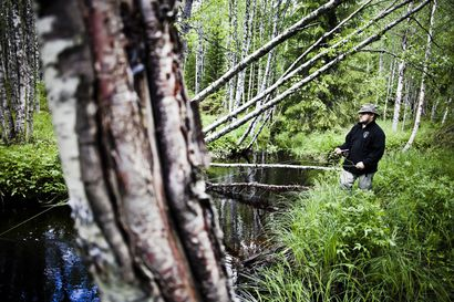 Suomen Luonnonsuojeluliiton mielestä Kemin biotuotetehtaan ympäristölupahakemus olisi pitänyt hylätä
