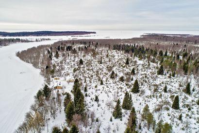 Pyhäjoen Matinsaaresta kolme kaavaluonnosta: Tarjolla jopa 7000 neliön tontteja