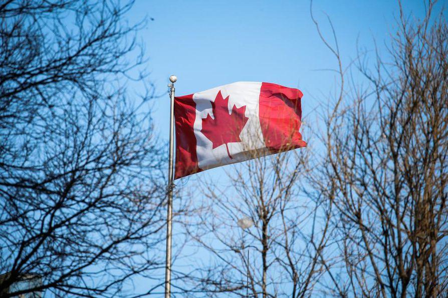 Näyte 1: Kanadalainen 47-vuotias mies, puhuu englantia äidinkielenään.