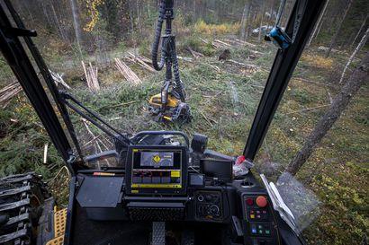 Suomen päätettävä itse metsäpolitiikastaan