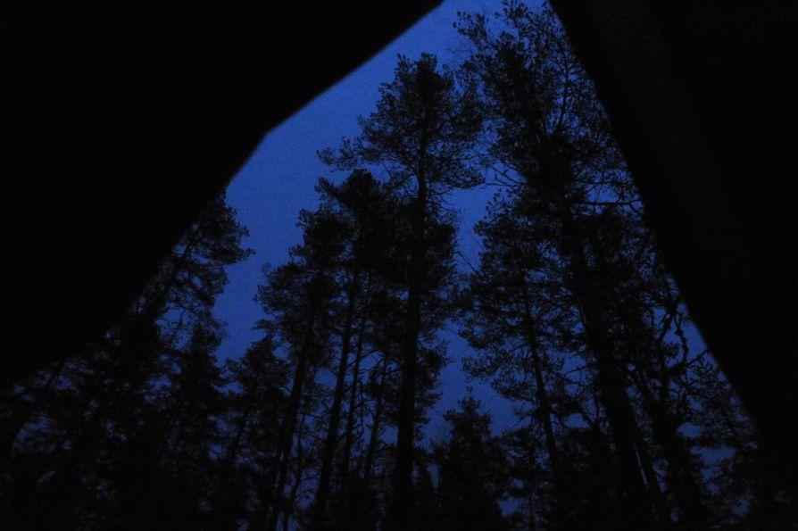 Kun pimeys vie näköaistilta terän, ihminen sortuu helposti kuvittelemaan olemattomia myös luonnossa.