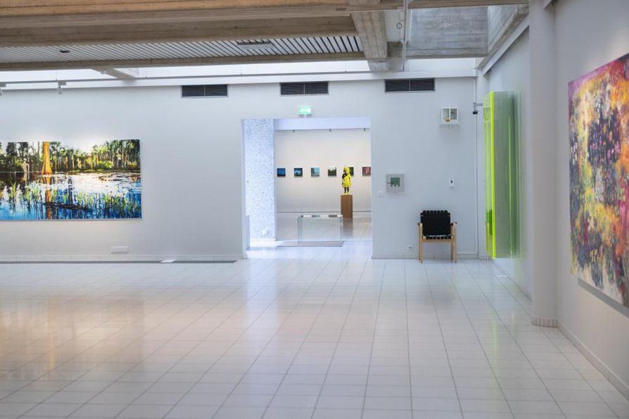 Apina ja vesiputous – Tämän ilmaston kuvia -näyttelyn teokset olivat esillä Sara Hildénin taidemuseossa Tampereella kesällä 2018.