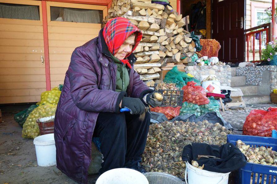 Viera Vlazik puhdistaa sipuleita myyntiin talonsa edustalla Varnjan kylässä. Hän myy sipuleita sekä letteinä että kiloittain.