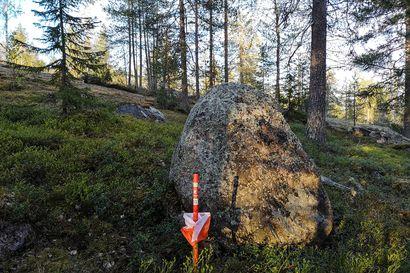 Ensi kesän Rovaniemen Jukolan viestin ilmoittautuminen käynnissä – Mukaan voi lähteä sekä talkoolaiseksi että kilpailuun
