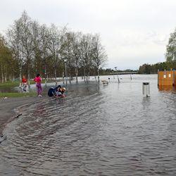 Iijoen tulvat nyt huipussaan, Kuusamossa tulvahuippu voi nousta mittaushistorian suurimmaksi