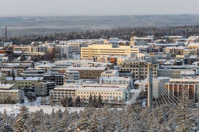 Näin Rovaniemi tukee yrityksiä: joustoa maksuissa, hankintoihin vauhtia... – Yrittäjille infolähetys keskiviikkona