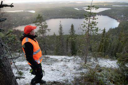 Matkailualueiden maisemakeräys tuotti vain tonnin – Suomen metsäkeskuksen mukaan Kuusamon kokeilusta on kuitenkin jo opittu paljon