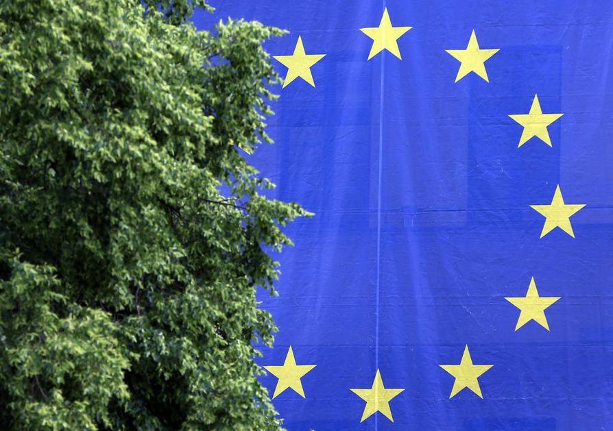 Yleiseurooppalainen agenda sai kansalaiset Euroopan parlamentin vaaleissa liikkeelle aiempaa vilkkaammin. Perinteiset puolueryhmittymät menettivät kannatustaan, mikä tekee ne toisistaan riippuvaisiksi ja patistaa yhteistyöhön. Kokonaisuutena ottaen vaalit olivat EU-myönteisten puolueiden voitto erityisesti vihreiden ja Alde-ryhmään kuuluvien puolueiden osalta,  vaikka myös kansallismieliset EU-kriittiset puolueet menestyivät paikoin hyvin.