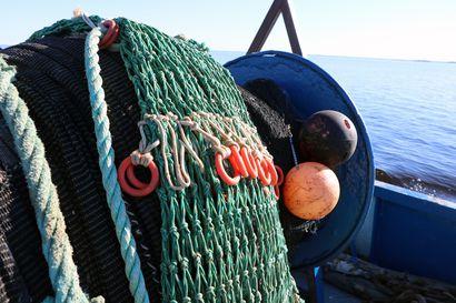 Tuen hakemisella on kiire: Pyhäjoen Elävisluodon kalasatamaa halutaan kehittää