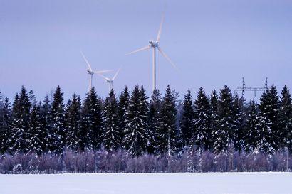 """Tornionlaakson Sähkön korkea siirtohinnoittelu tekee Palovaaran tuulivoimapuistosta kannattamattoman: """"Verkkoyhtiö ei aio tehdä mitään"""""""