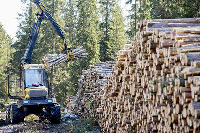 Tuotto vai luontoarvot etusijalle? – Mobiilisovellus neuvoo metsänomistajaa monitavoitteiseen metsänhoitoon