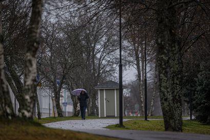 Liisa-myrskyn jälkiä: Useita satoja talouksia ilman sähköjä Raahen ja Pyhäjoen alueella