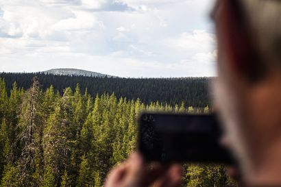 Valtioneuvosto esittää Sallan kansallispuiston perustamista – Puistoon tulisi vajaan tuhannen hehtaarin metsästysrajoitusalue, jolla hirvenajo olisi kuitenkin sallittua