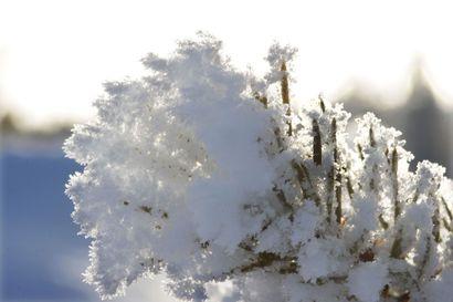 Viime vuoden sää paketissa: Utsjoki oli sekä maan kylmin että vähäsateisin kunta