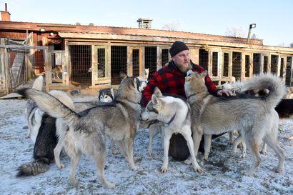 """""""Hiljaisuus on se juttu"""" - Posion vuoden yrityksenä palkittu Kota-Husky on vienyt turisteja metsäretkille jo kymmenen vuotta"""